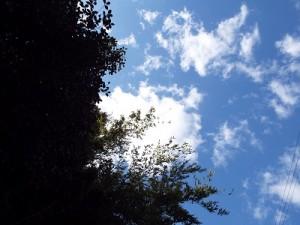 3月初日の青空